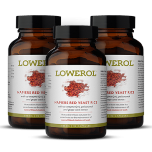 lowerol - cholesterol lowering supplement